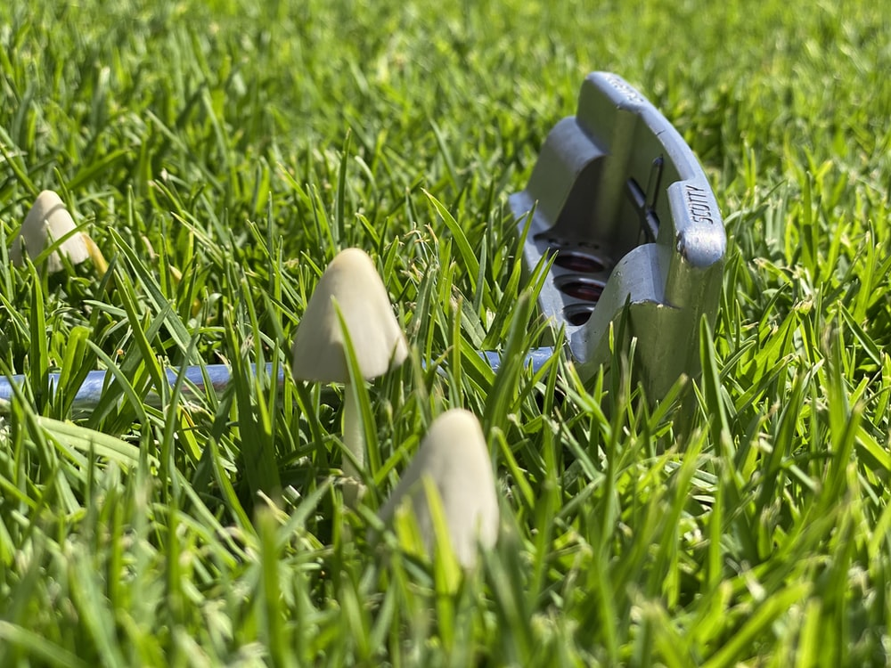 white plastic tool on green grass