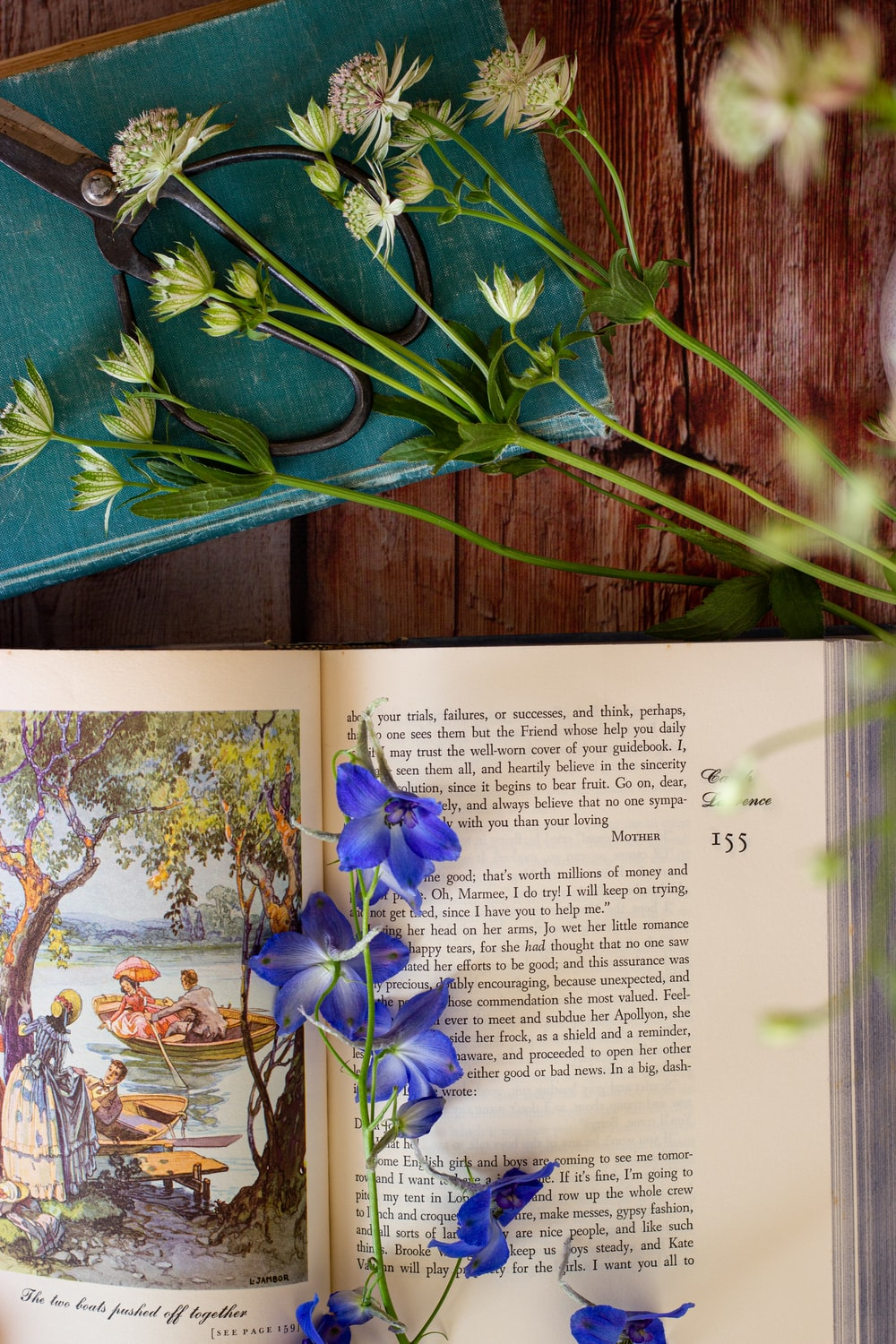blue flowers on white book page