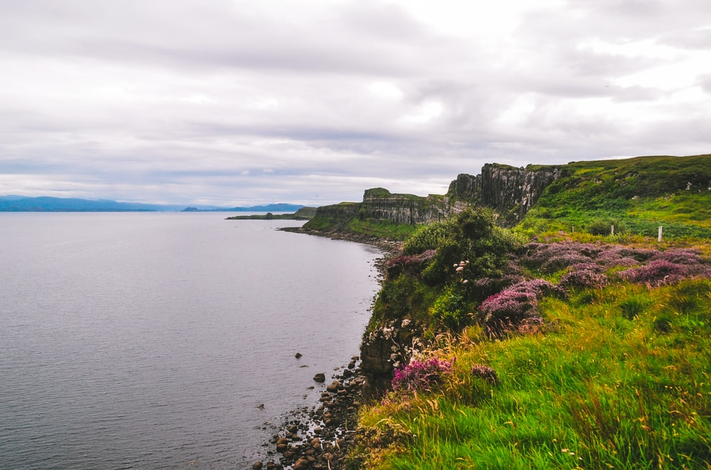 green grass on cliff by the sea under white clouds during daytime