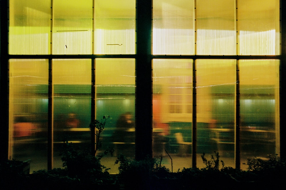 silhouette of trees in front of glass window