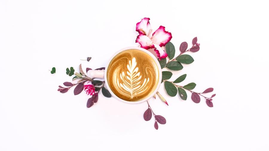 latte coffee aesthetic