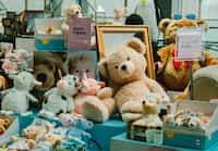 teddy bear teddys stories