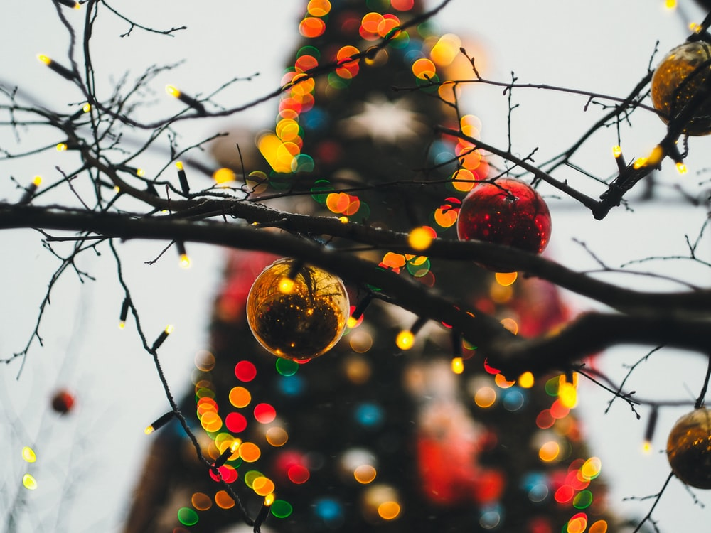 red and yellow christmas baubles on brown tree branch
