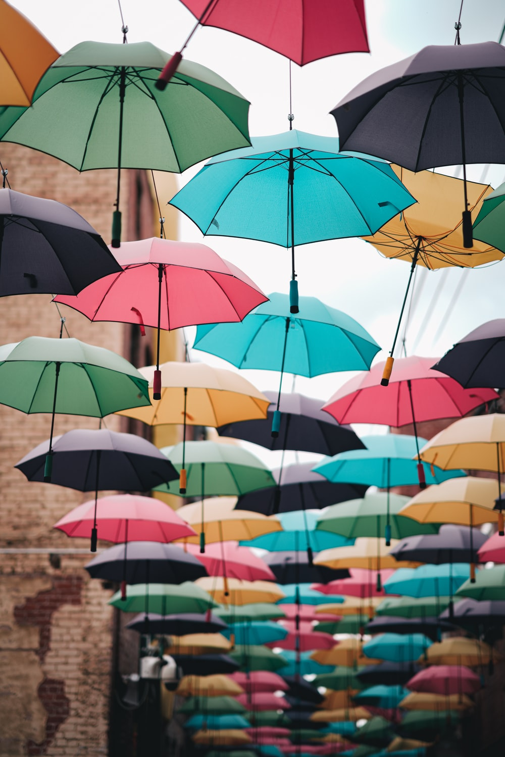 assorted umbrella hanging on wire during daytime