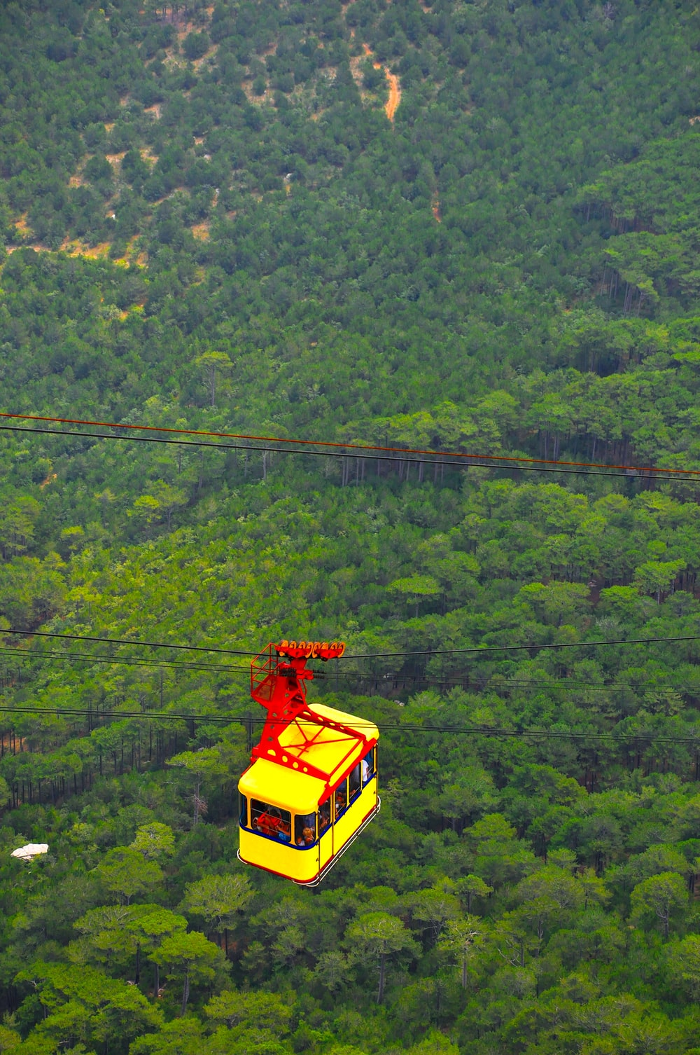yellow cable car over green trees during daytime