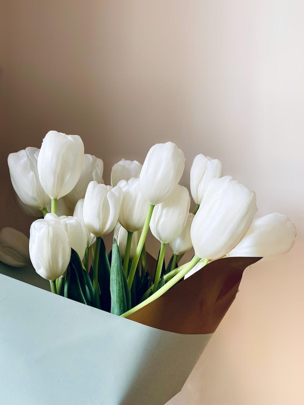 white tulips in brown vase
