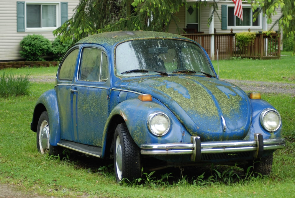 blue volkswagen beetle parked on green grass field during daytime