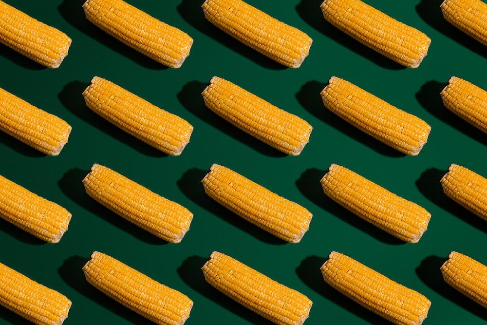 yellow corn on white ceramic plate