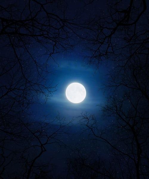 Звёздное небо и космос в картинках - Страница 9 Photo-1590005510163-dec35d52ddcd?ixlib=rb-1.2