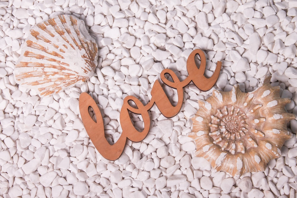 brown love letter on white and brown floral textile