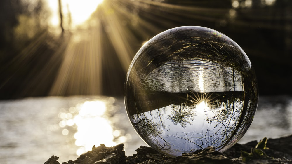 clear glass ball on brown dried leaves