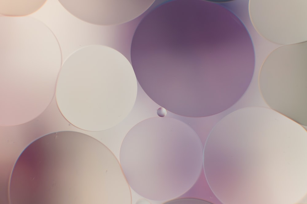 purple and white round illustration