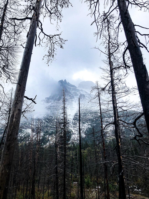 #travel #montana #clouds #hiking