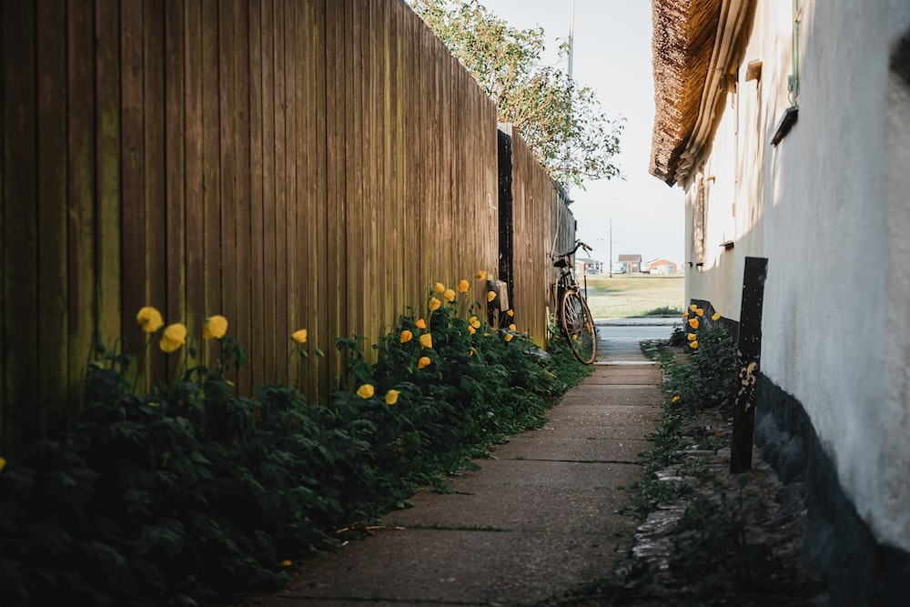 black bicycle parked beside brown wooden wall during daytime
