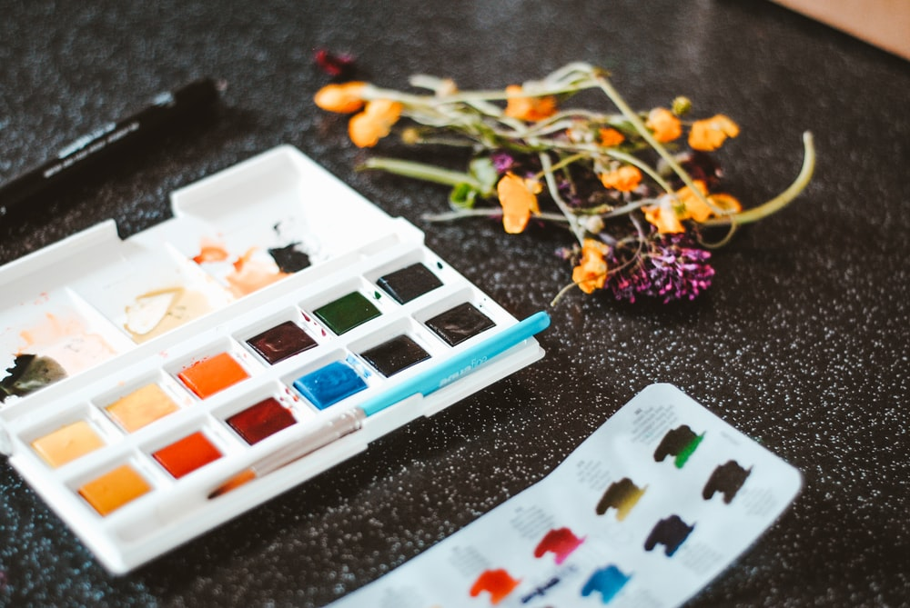 paint palette with dried flowers
