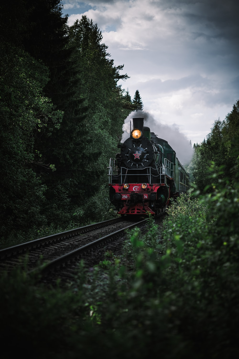 red and black train on rail tracks surrounded by green trees during daytime
