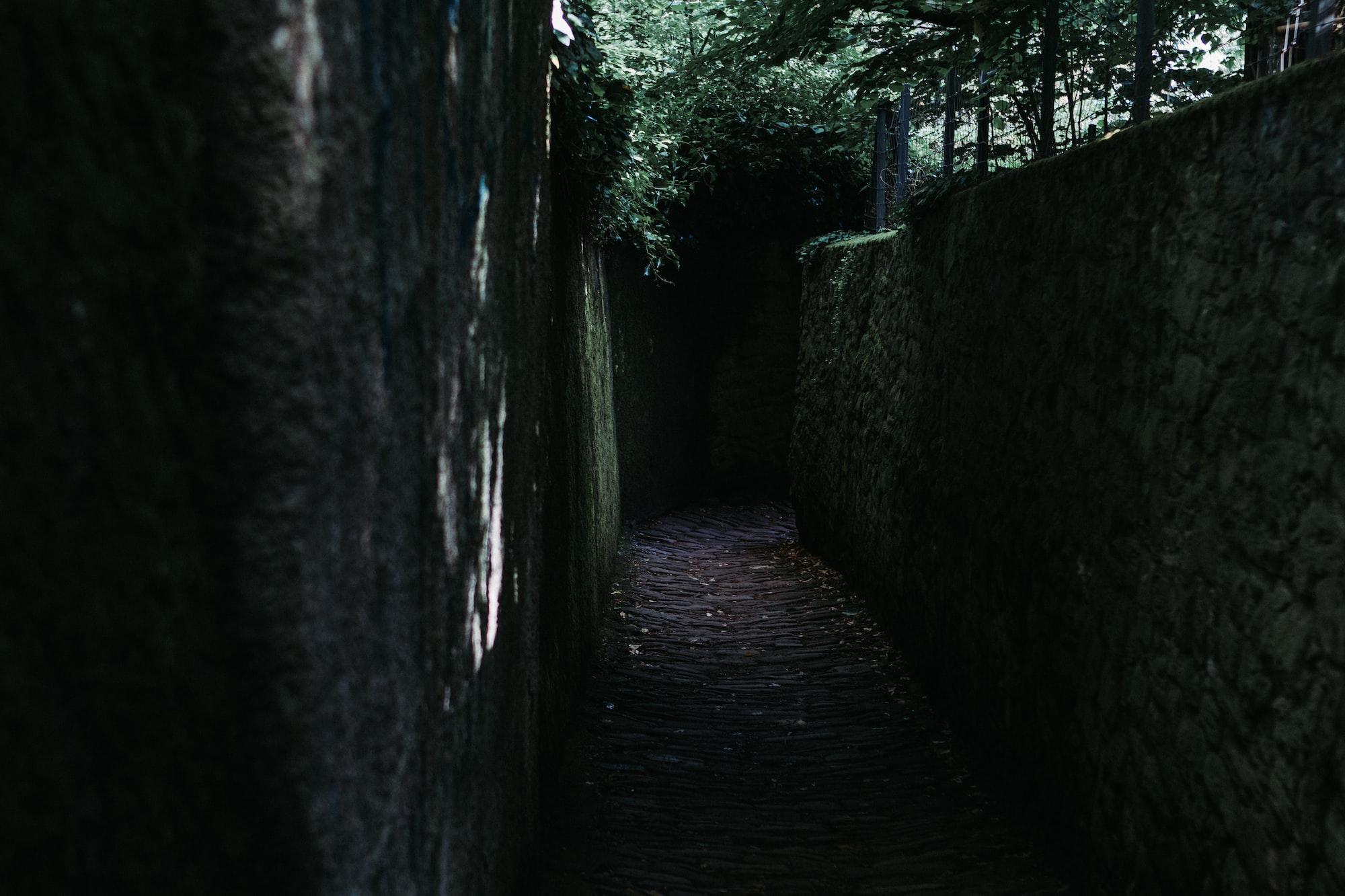 जर्मनीतले लॉकडाऊनचे अनुभव - अनघा दातार (मराठी कट्टा ब्लॉग स्पर्धा २०२०)