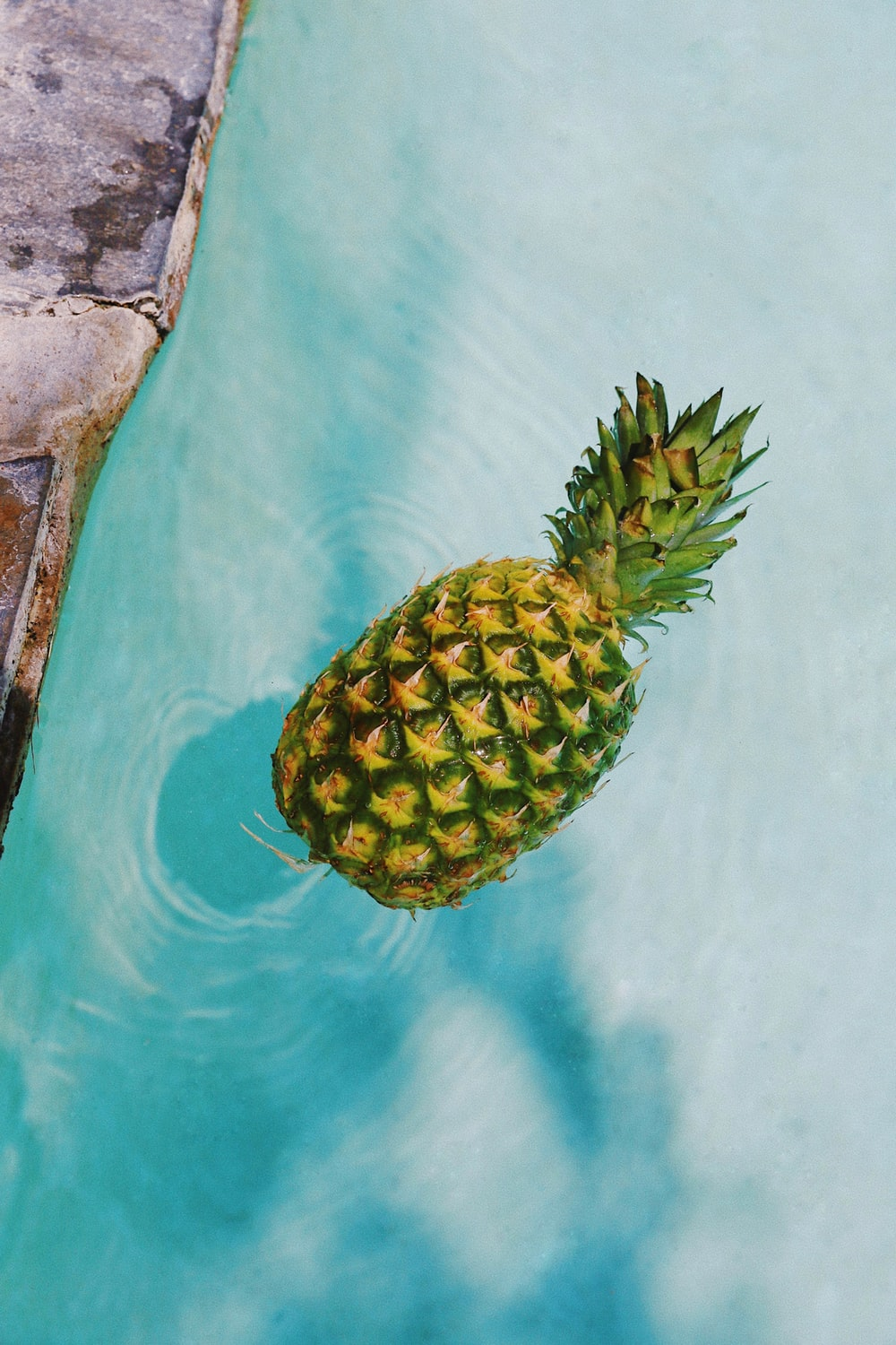 pineapple fruit on blue and white textile