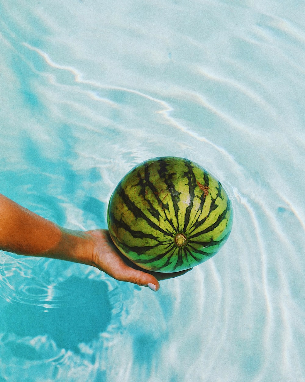 person holding green and brown ball