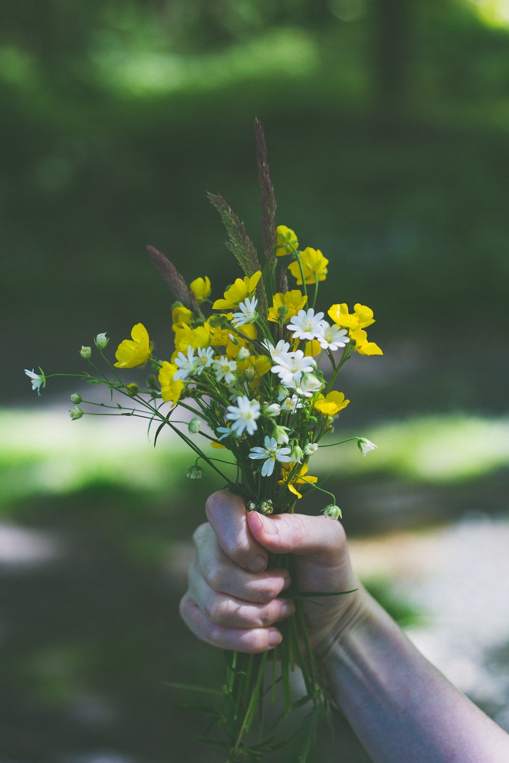 person holding yellow flowers during daytime