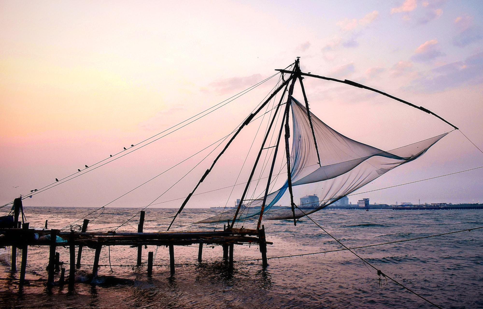 Chinese Fish Net