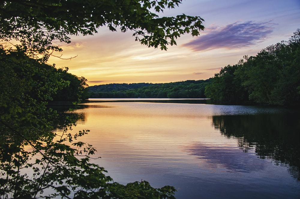 body of water near green trees during sunset