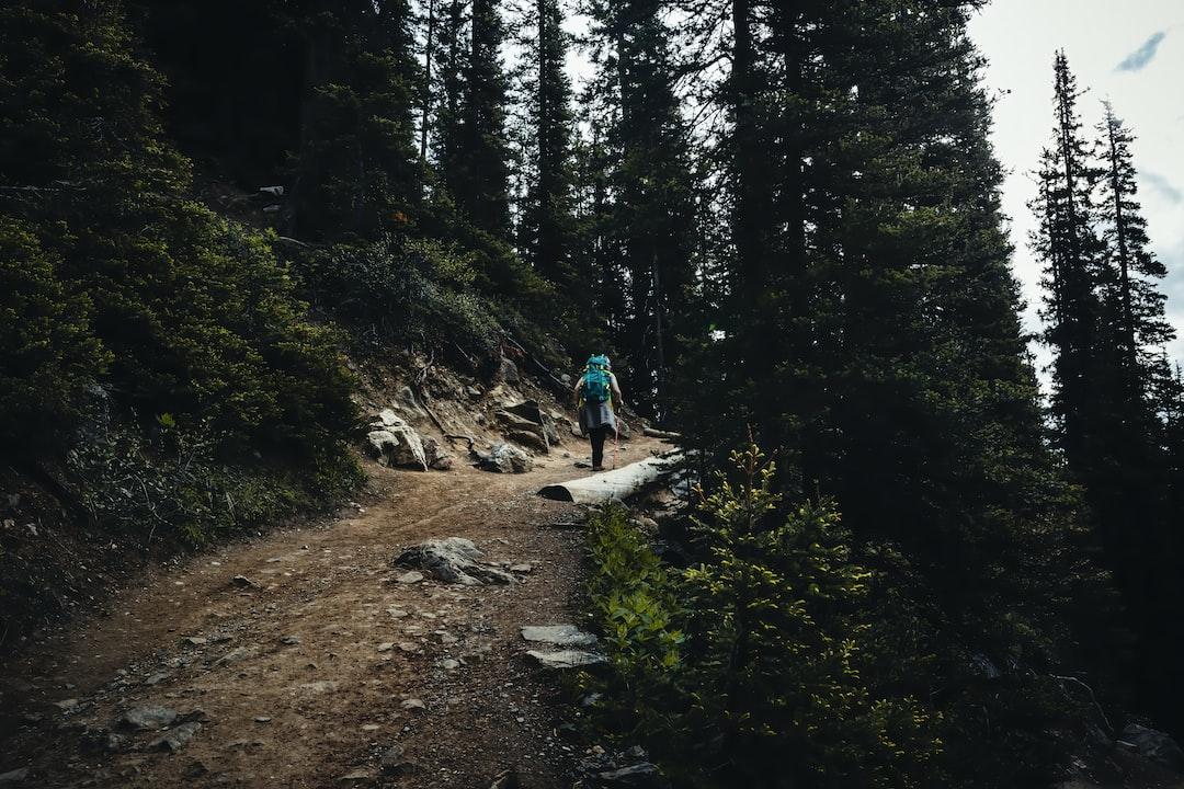 Hiking up the Lake Agnes Trail next to Lake Louise