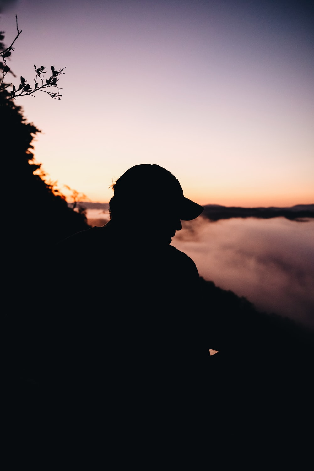 silhouette of man standing near tree during sunset
