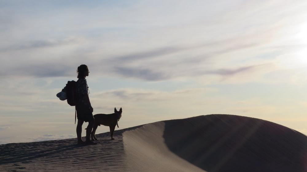 man in black jacket standing beside brown dog on brown sand during daytime