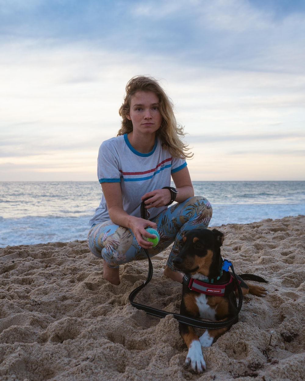 woman in blue crew neck t-shirt holding black and brown short coated dog on beach