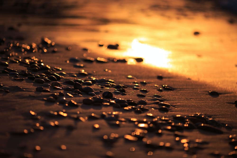 water droplets on the shore during sunset