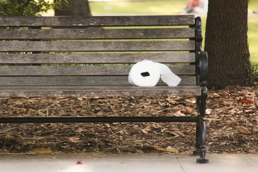white wooden bench on brown dried leaves