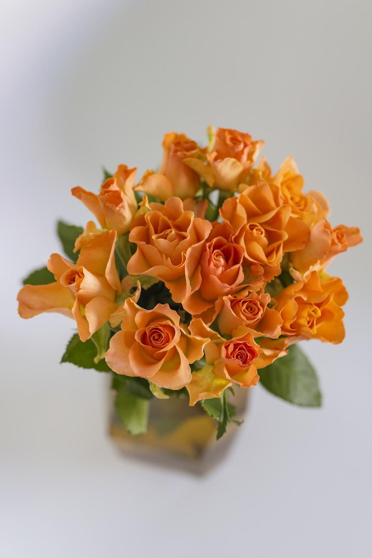 orange flowers in green glass vase