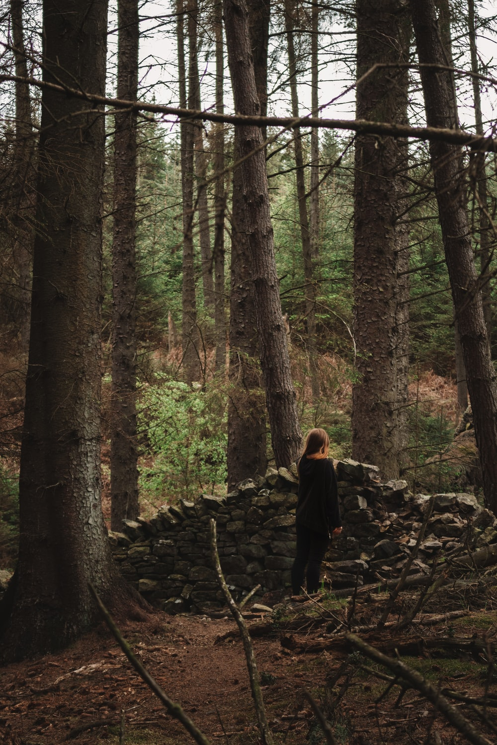 woman in black jacket walking on forest during daytime