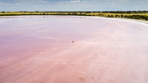 Top 5 Pink lakes around the world - A spectacular sight