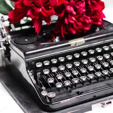 red rose on black typewriter