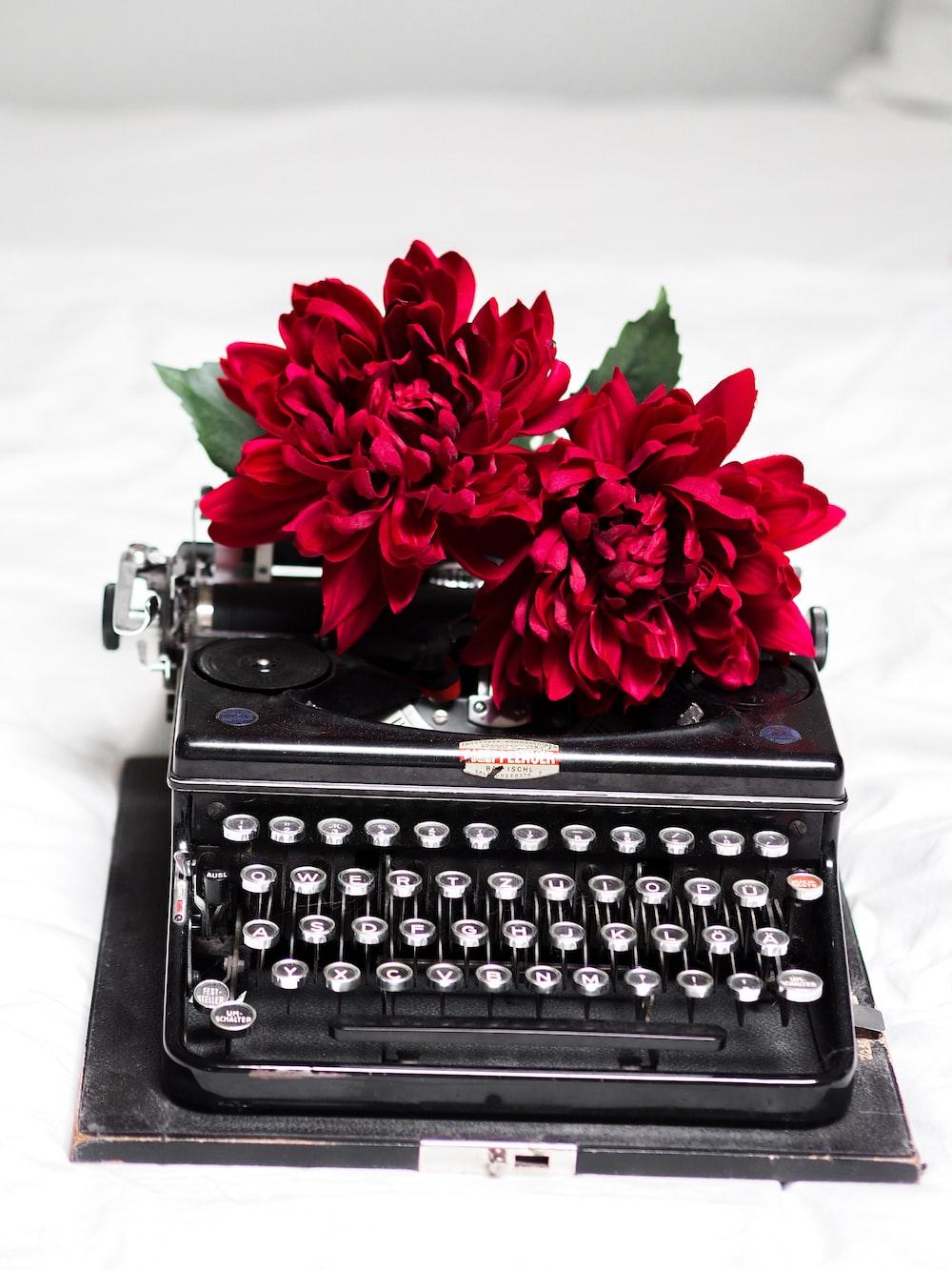 red roses on black typewriter