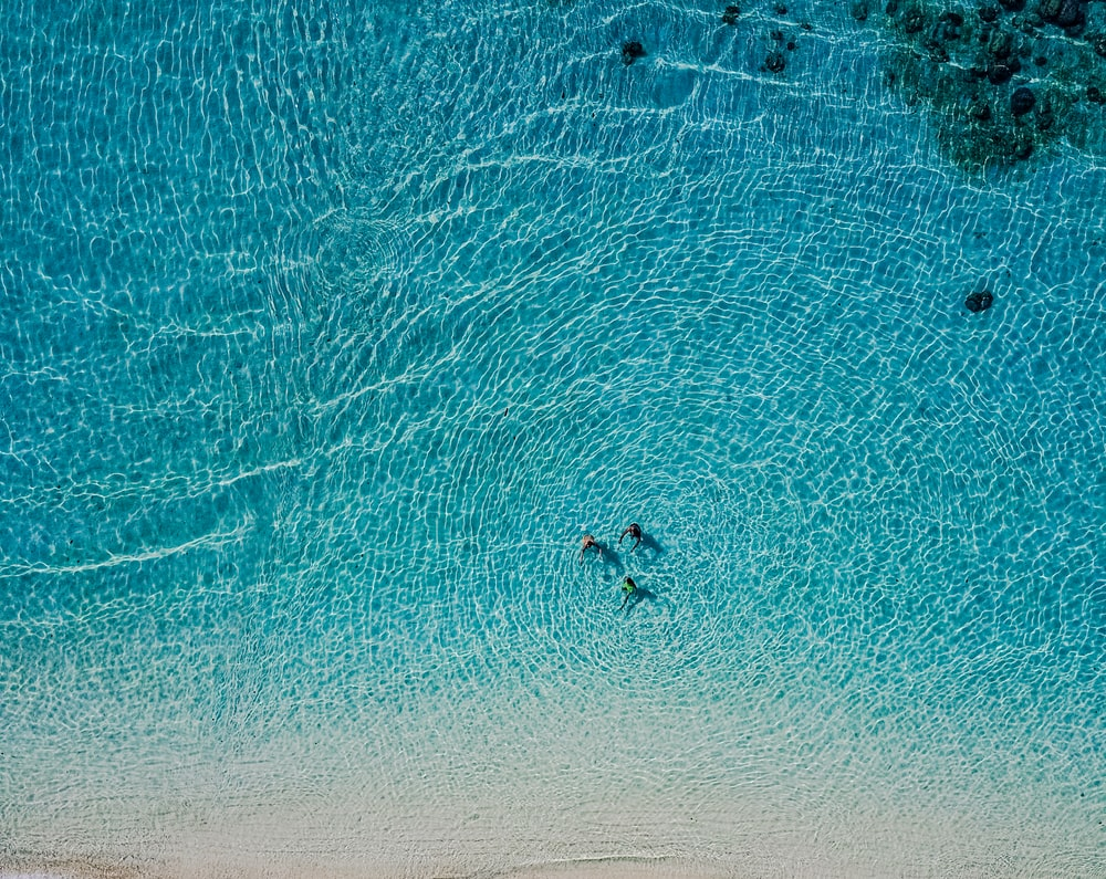 aerial view of person surfing on sea during daytime