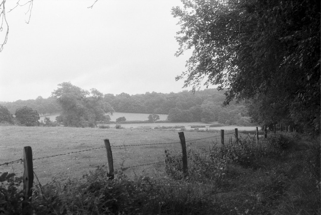 Wild footpaths and fields