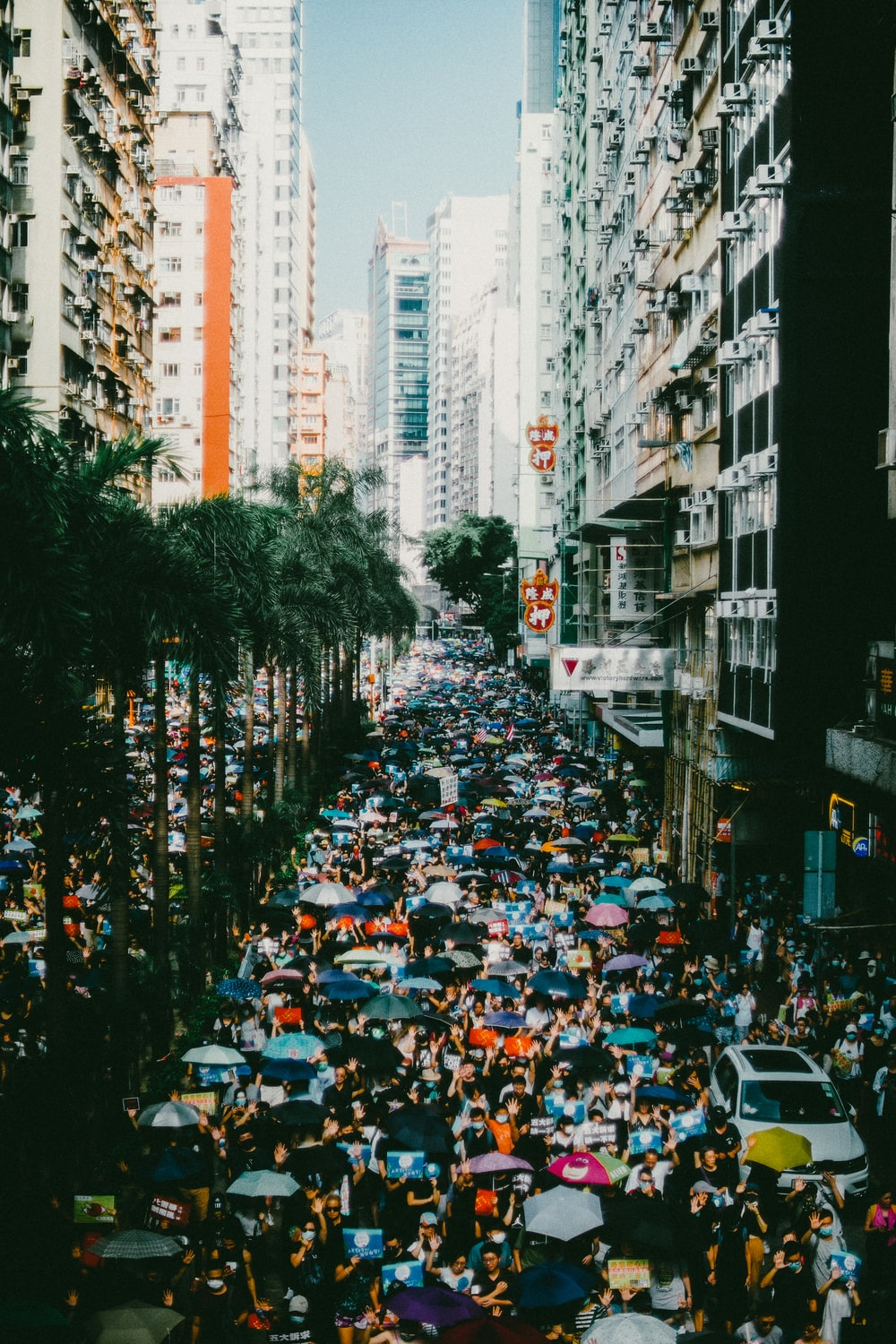 people in a city street during daytime