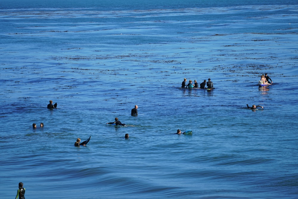 group of people swimming on sea during daytime