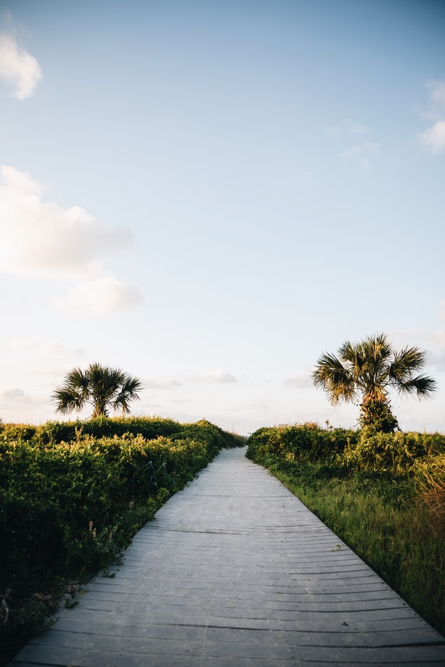 Boardwalk in Hilton Head, SC