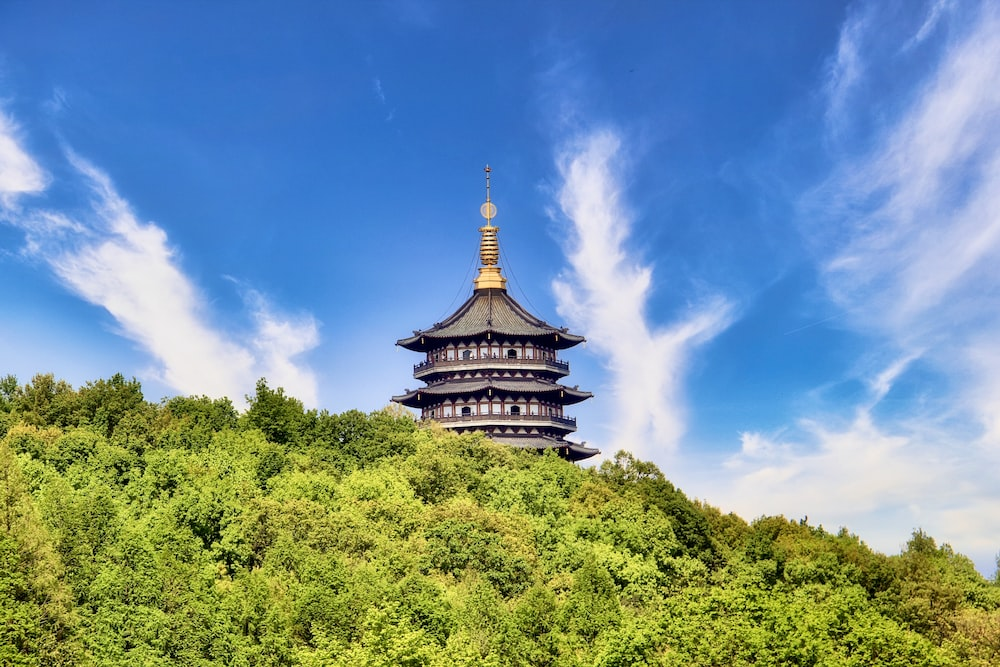 brown and green temple surrounded by green trees under blue sky during daytime