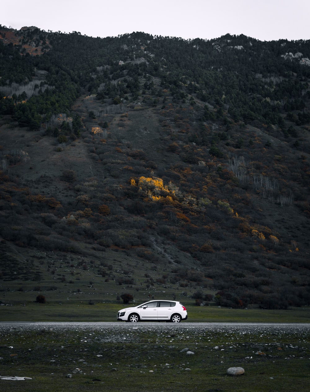 white porsche 911 on road