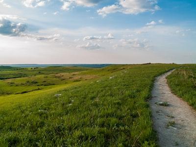 green grass field under blue sky during daytime prairie teams background
