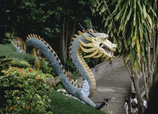 blue and yellow dragon on green grass