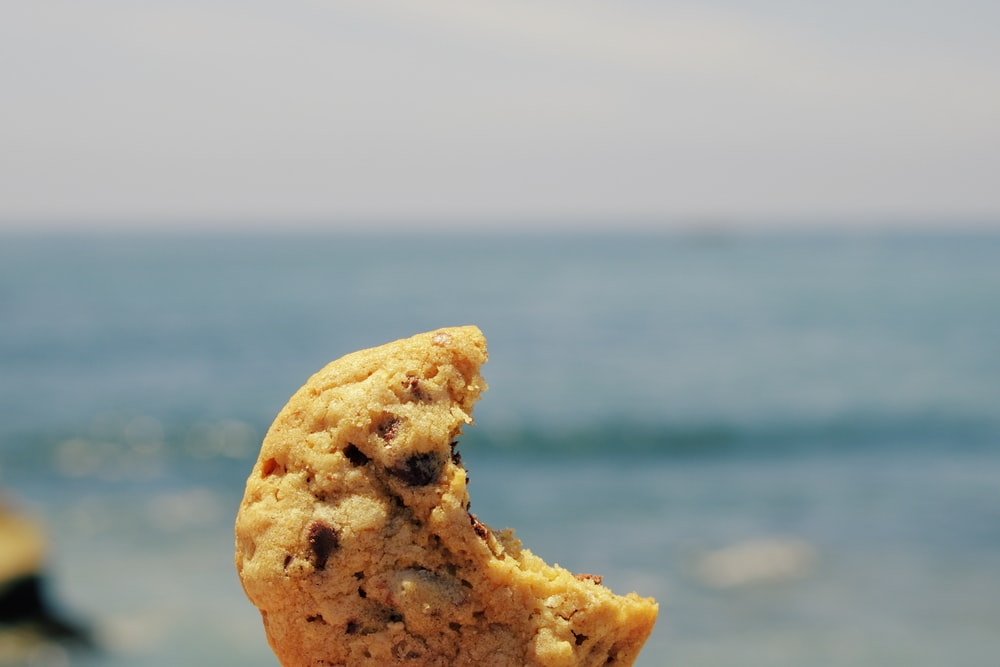brown bread on blue sea during daytime
