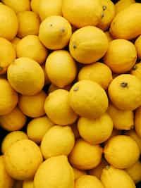 When Life Gives You Lemons lemons stories