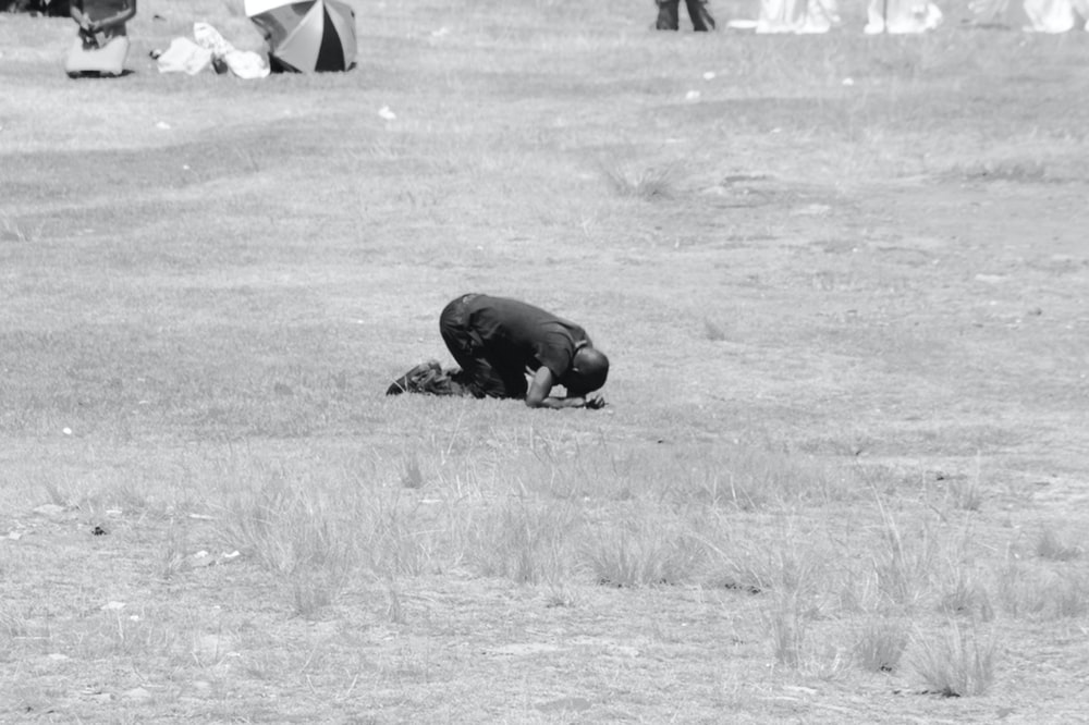 black animal on brown grass field
