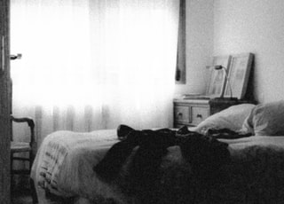 black and white photo of a dog on bed